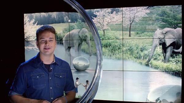 Wie sieht der Zoo der Zukunft aus? Moderator Felix begibt sich auf Spurensuche. | Rechte: KiKA