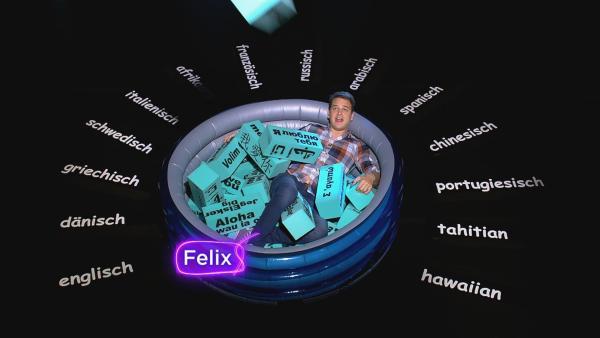 Felix kann kaum den Überblick über die rund 6.000 Sprachen und mehrere tausende Dialekte behalten. | Rechte: KiKA