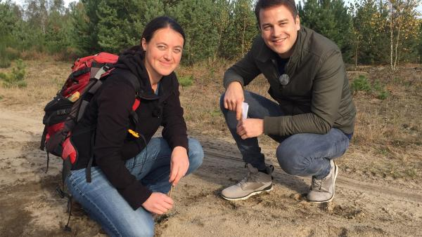 Felix findet zusammen mit der Biologin und Wolfsforscherin Helene Möslinger Wolfsspuren im Sand. | Rechte: KiKA/Petra Bertram