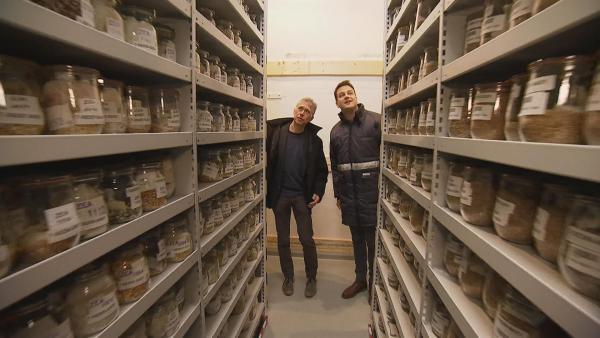 Thomas Altmann zeigt Felix die Sammlung von Maissamen. | Rechte: KiKA