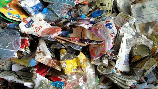 Das große Plastik-Quiz | Rechte: KiKA