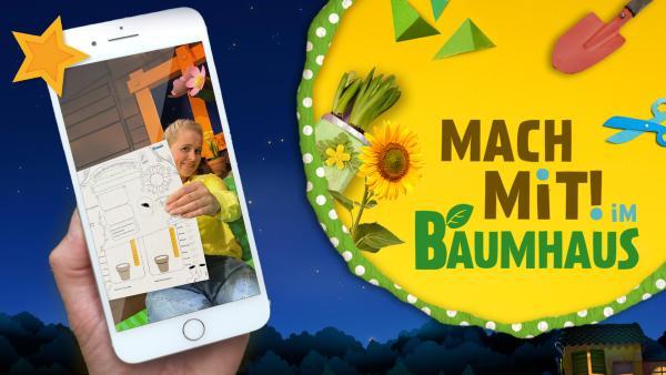 MACH MiT! Sonnenblume und Pflanztagebuch    Rechte: KiKA