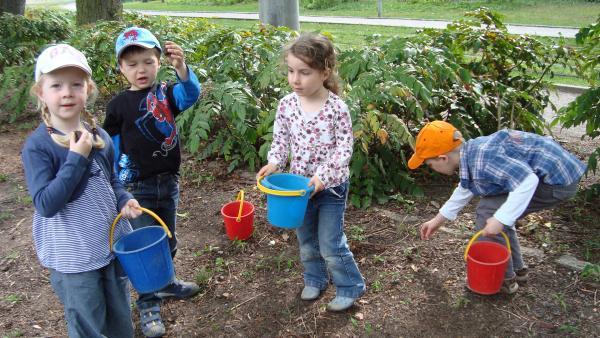 Kinder suchen nach ertastbaren Naturmaterialien | Rechte: KiKA