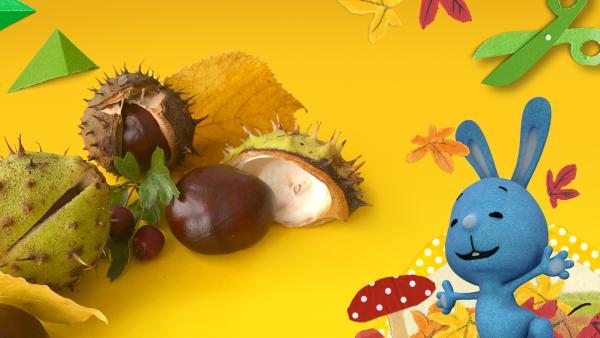 Herbst  | Rechte: KiKA