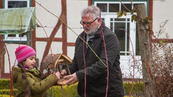 Opa Karl (Peter Rauch) hilft, das Vogelhaus mit aufzustellen. | Rechte: KiKA/Kinderfilm GmbH 2017