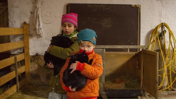 Auf eigene Faust beschließen die Kinder die Kaninchen zu retten: (v.l.n.r.) Sarah Bendjelba (Rolle Samina), Piet Eckert (Rolle Felix). | Rechte: KiKA/Kinderfilm GmbH 2017