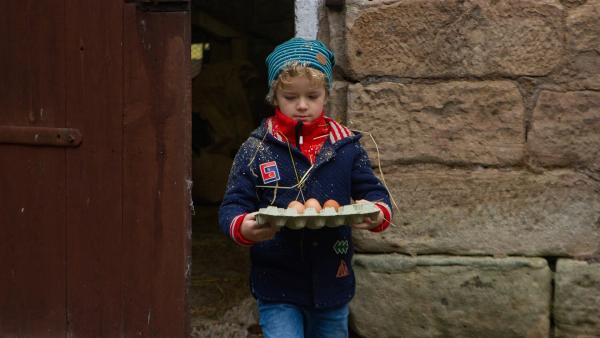 Felix (Piet Eckert) holt Eier zum Waffeln backen. | Rechte: KiKA/Kinderfilm GmbH 2017