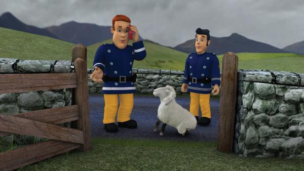 Das Gatter der Schafsweide ist kaputt. Wohin nur mit Wooly?   Rechte: KiKA/HIT Entertainment