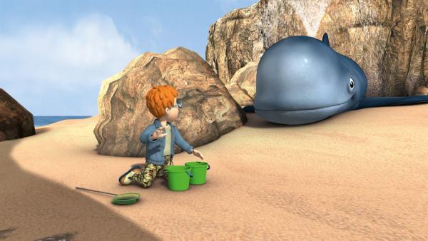 Mandy und Norman sind am Strand unterwegs und sammeln Seesterne, Krabben und andere Meerestiere. Norman hat wie immer die Nase vorn, aber dann macht Mandy einen wirklich riesigen Fund: Sie entdeckt einen gestrandeten Wal!   Rechte: KiKA/HIT Entertainment