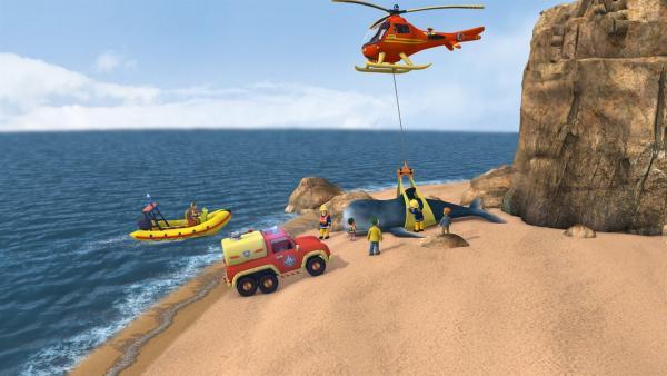 Mandy und Norman haben am Strand einen gestrandeten Wal entdeckt. Feuerwehrmann Sam und seine Crew helfen dem Tier zurück ins Wasser.   Rechte: KiKA/HIT Entertainment