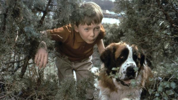 Heimlich beobachtet Pelle (Stephen Lindholm) mit dem Hund Bootsmann das bunte Treiben am Ufer. | Rechte: ZDF/Taurus-Film
