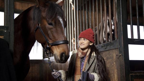 Dana (Nataša Paunović) im Pferdestall | Rechte: NDR/MINI Film/Petro Domenigg