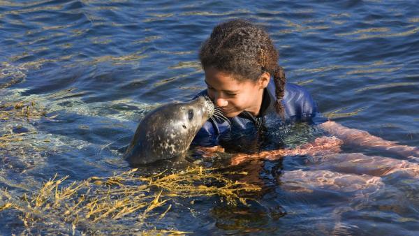 Noora (Amina Hegvold Sanca) hat ein Seehundbaby gerettet und es auf den Namen Selma getauft. | Rechte: KI.KA/Eivind Senneset
