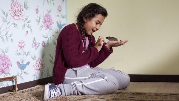 In der neuen Wohnung läuft Meral (Hiba Ghafry) ein kleiner Spielgefährte zu. Sie gibt der Maus den Namen Piep-Piep. | Rechte: ZDF/Lemming Film