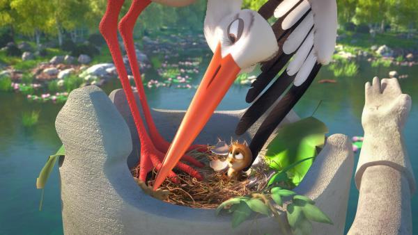 Der Spatz Richard wird von einer Storchenfamilie aufgezogen.   Rechte: NDR