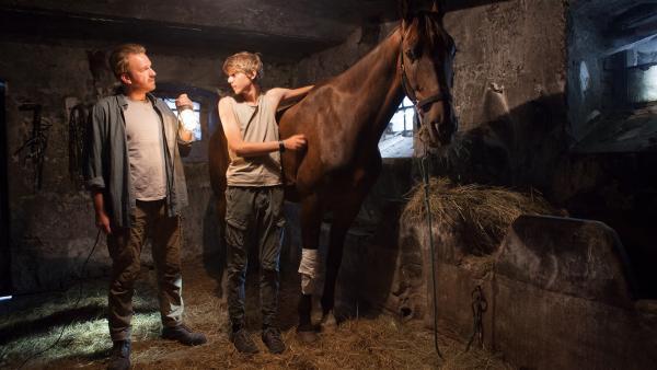 Darek (Tomáš Dalecký) und sein Vater (Stanislav Majer) versorgen die Wunden des Hengstes Krokant.   Rechte: MDR/Kinderfilm GmbH/Andreas Wünschirs