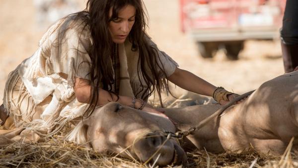 Tara (Nicolette Krebitz) versucht ihrem Pferd zu helfen. | Rechte: hr/2017 Constantin Film Verleih GmbH/SamFilm GmbH