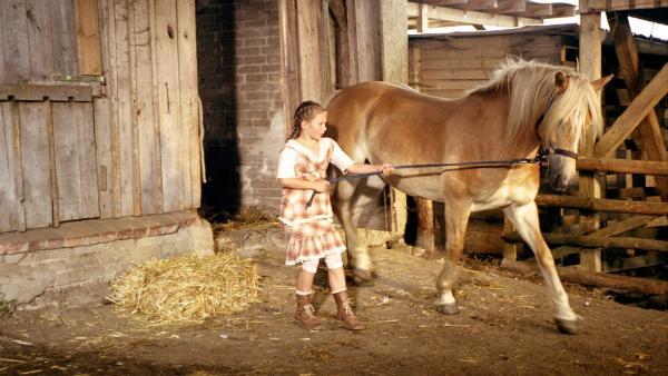 Noch ist Mississippi, das neue Pferd von Emma (Zoe Charlotte Mannhardt), störrisch. Doch Emma gibt nicht auf, sich mit ihm anzufreunden. | Rechte: ZDF/Wolfgang Jahnke