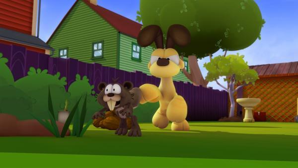 Odie geht auf Eichhörnchenjagd. Das endet regelmäßig damit, dass Odie von den cleveren Eichhörnchen fertig gemacht wird.   Rechte: HR/DARGAUD MEDIA