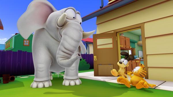 Shrimpy, der Elefant, wird von seinem Besitzer schlecht behandelt und flieht mit Hilfe von Garfield und Odie.   Rechte: HR/DARGAUD MEDIA