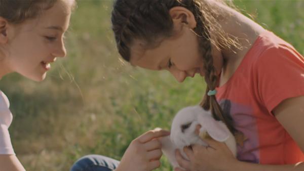 Kika wünscht sich nichts sehnlicher als ein Haustier. Gemeinsam mit ihrer besten Freundin Maša findet sie ein Kaninchen, das ein neues Zuhause sucht. Die beiden beschließen, es zu adoptieren und heimlich bei Kika zuhause unterzubringen. | Rechte: SR/HRT Croatia