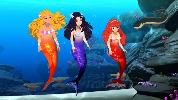Die drei Meerjungfrauen Emma, Cleo und Rikki (v.l.n.r.) mit ihren Freunden Bernie und Zita | Rechte: ZDF/Les Cartooneurs Associés