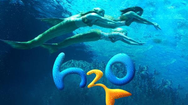H2O - Plötzlich Meerjungfrau auf zdftivi.de | Rechte: ZDF