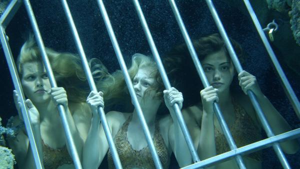 Emma (Claire Holt, li.), Rikki (Cariba Heine, Mitte) und Cleo (Phoebe Tonkin, re.) in der Falle. Das Geheimnis der Meerjungfrauen ist aufgeflogen. | Rechte: ZDF/Jasin Boland