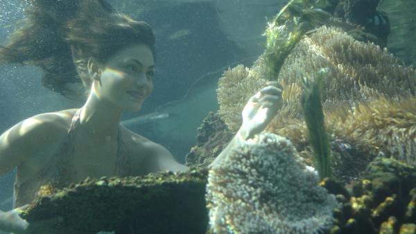 Cleo (Phoebe Tonkin) sucht nach Zutaten um die Zauberpaste herzustellen mit der die Meerjungfrauen angeblich Wünsche erfüllen können. | Rechte: ZDF/Jasin Boland u.a.