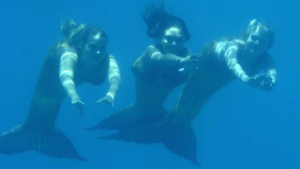 Emma (Claire Holt, li.), Cleo (Phoebe Tonkin, Mitte) und Rikki (Cariba Heine, re.) als Meerjungfrauen auf dem Weg nach Mako Island.   Rechte: ZDF/Jasin Boland