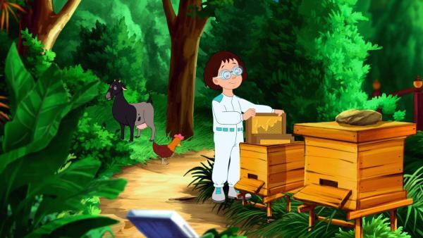 Eine Wissenschaftskollegin Aikos am Bienenkasten. | Rechte: WDR