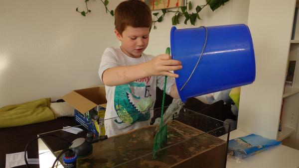 Vincent hat heute ein Aquarium bekommen und bereitet nun alles vor, damit sich die Fische wohlfühlen. | Rechte: ZDF/Studio.TV.Film GmbH