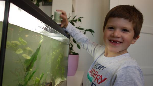 Vincent ist stolz, nun endlich die Fische füttern zu können. | Rechte: ZDF/Studio.TV.Film GmbH