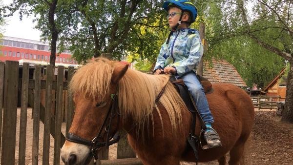 Der fünfjährige Jakob darf heute auf dem Ponyhof zum ersten Mal traben. | Rechte: ZDF/Studio.TV.Film