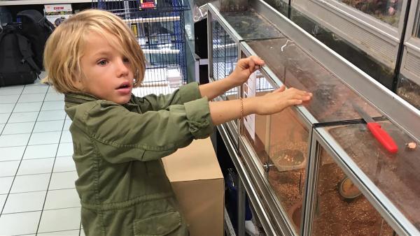 Nima in der Zoohandlung | Rechte: rbb