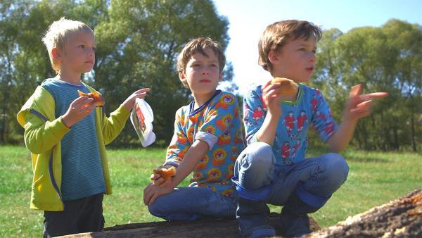 Pelle und Rasmus (rechts) sind Zwillingsbrüder. Sie spielen am liebsten mit ihrem Freund Leo(links). | Rechte: KiKA