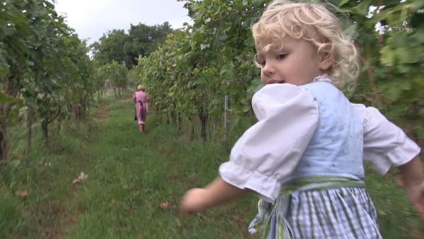 Im Weinberg zu spielen macht Helena (6 Jahre) und ihrer kleinen Schwester Marija richtig viel Spaß. Ob Marija ihre große Schwester noch einholt? | Rechte: ZDF/RAI