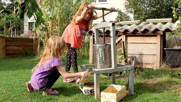 Lina und Lea stellen mit der Saftpresse leckeren Obstsaft her. | Rechte: rbb/Anderthalb Medienproduktion GmbH