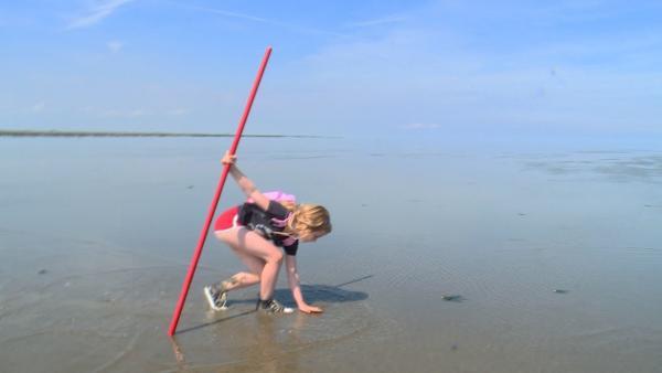 Sarah (6 Jahre) ist eine echte Watt-Expertin. Besonders fasziniert ist sie von den Krebsen, die sie auf ihrer Wanderung findet. Ihren roten Stock hat sie auf Wanderungen durchs Wasser immer dabei. | Rechte: ZDF/ KRO-NCRV