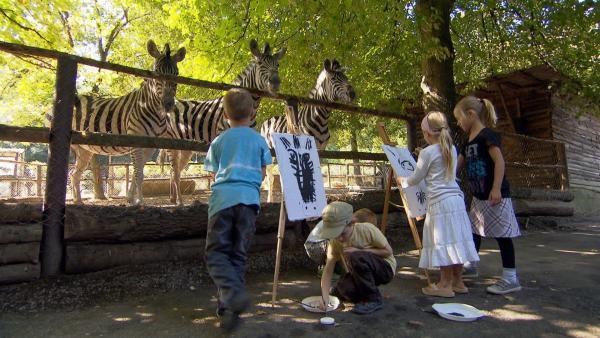 """In der """"Ich kenne ein Tier""""-Geschichte hat das Zebra ein Problem mit seinen Streifen. Nach einem Sturz sind sie völlig verrutscht. Was es auch unternimmt, es bekommt zwar viele neue Muster, aber keine Streifen…   Rechte: SWR"""