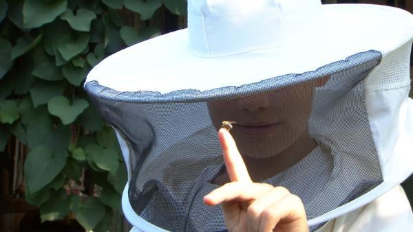Jakob und Simon haben einen eigenen Bienenstock. | Rechte: SWR