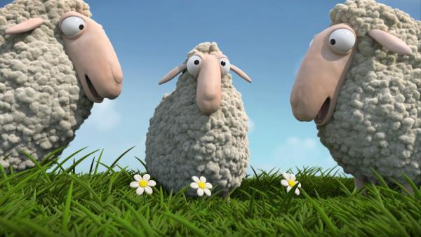 """In der """"Ich kenne ein Tier""""-Geschichte macht ein kleines Lamm einfach nie das, was die Eltern von ihm wollen. Nicht mal """"Mäh"""" will das Kleine sagen. Lieber sagt es - """"Muh""""!   Rechte: SWR"""
