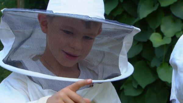 Jakob und Simon haben einen eigenen Bienenstock. Bienen können stechen, aber die beiden haben keine Angst. Sie mögen ihre Bienen und sie beobachten gerne, wie sie schlüpfen. | Rechte: KiKA