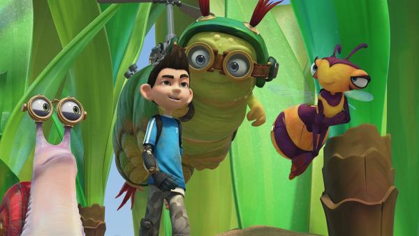 Die Insectibles sind bereit für ein Abenteuer.   Rechte: KiKA/One Animation PTE LTD.
