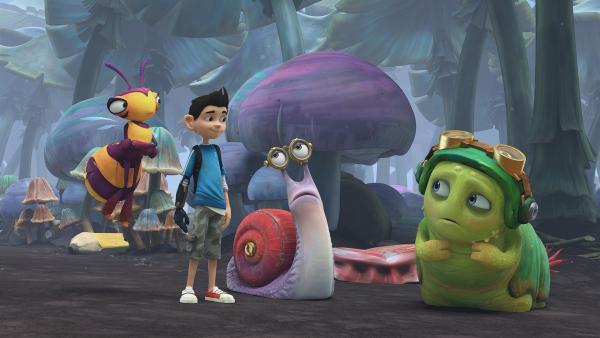Willow, Zak, Syd und Chowser sind im unheimlichen Pilzwald. | Rechte: KiKA/One Animation PTE LTD.