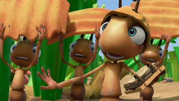 Die Ameisen beim Transport | Rechte: KiKA/One Animation PTE LTD.