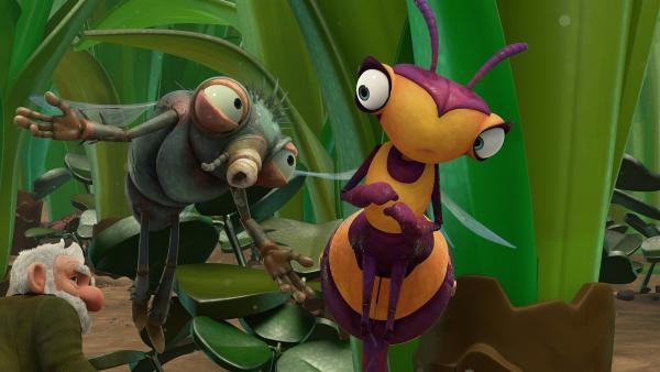Eine Fliege begrüßt Willow.   Rechte: KiKA/One Animation PTE LTD.
