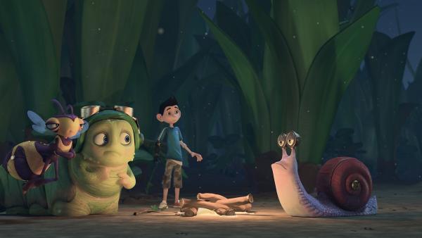 Am Lagerfeuer erzählt Zak den Insectibles eine gruselige Geschichte. | Rechte: KiKA/One Animation PTE LTD.