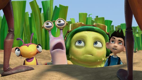 Die Insectibles sind in einem Erdloch gefangen. | Rechte: KiKA/One Animation PTE LTD.