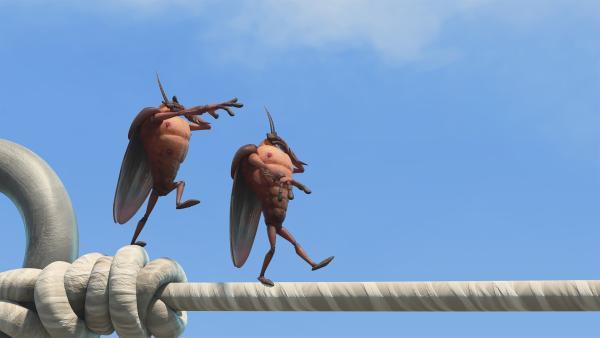Hye und Lo balancieren auf der Wäscheleine. | Rechte: KiKA/One Animation PTE LTD.
